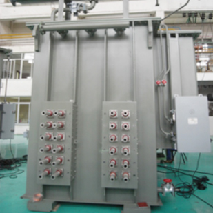 220kV oil immersed transformer